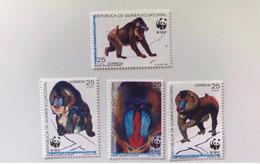 GUINÉE ÉQUATORIALE 1991 WWF 4v Neuf ** MNH Mi 1731 1734 Singe Monkey Mono Mammifère Mammal Mamífero GUINEA ECUATORIAL - Ongebruikt