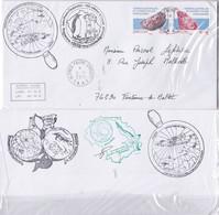 France TAAF 2011 Lettre Avec TUC  YT 578-579 Et Oblitération Crozet - Briefe U. Dokumente