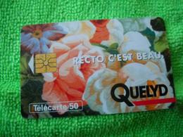 7133 Télécarte Collection QUELYD Colle  Verso C'est PRO  Fleurs Pinceau  50u  ( Recto Verso)  Carte Téléphonique - Pubblicitari