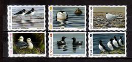 2017 Isle Of Man Birds Of Sea Side Photography Of Jeremy Paul MNH** MiNr. 2263 / 8 Eurasian Oystercatcher Seagull Duck - Isle Of Man