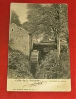 DENEE  -  MAREDSOUS    -      Le Moulin De Denée  - 1901 - Anhee