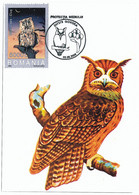 MAX 31 - 127 OWL, Romania - Maximum Card - 2006 - Eulenvögel
