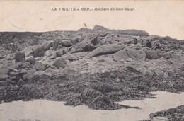 LA TRINITE SUR MER  Rochers De Men Halen  (peu Fréquente) - La Trinite Sur Mer