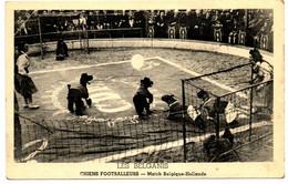 LES BELGANIS - Chiens Footballeurs - Match Belgique-Hollande - Cirque/circus/chien/spectacle/football - 2 Scans - Cani