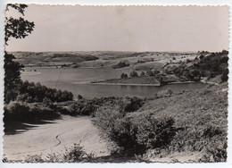 15 L'AUVERGNE - Viaduc Du RIBEYRES Sur Le Lac De Saint Etienne Cantalès - Sin Clasificación