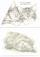 Chat   Dessin Illustration V Miller Lot De 2 - Gatti