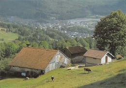 88-LES VOSGES-N°3457-A/0025 - Autres Communes