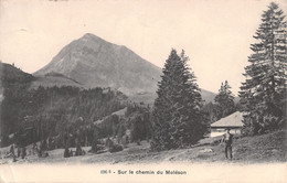 Sur Le Chemin Du Moléson - Armailli - Chalet D'alpage Gruyère Gruyères - FR Fribourg