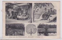 92901 Mehrbild Ak Gruß Aus Dem Waldrestaurant 'Neumühle' Bei Coswig 1908 - Zonder Classificatie