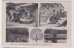 92900 Mehrbild Ak Gruß Aus Dem Waldrestaurant 'Neumühle' Bei Coswig 1908 - Zonder Classificatie