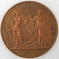 Comité Régional Agricole, Exposition Du 20.23 Septembre 1877 à Brumath , SUP - Professionals / Firms