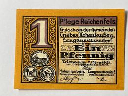 Allemagne Notgeld Triebes 1 Pfennig - Collezioni