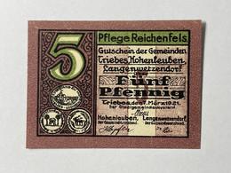 Allemagne Notgeld Triebes 5 Pfennig - Collezioni