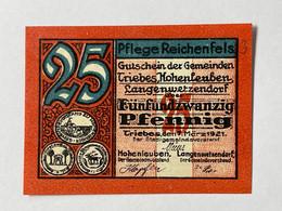 Allemagne Notgeld Triebes 25 Pfennig - Collezioni