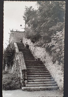 Carte Postale PITHIVIERS (Loiret): 11 Escalier De La Poterne, 060 - Pithiviers