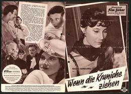 Filmprogramm IFB Nr. 4373, Wenn Die Kraniche Ziehen, T. Samoilowa, A. Batalow, Regie: Michail Kalatosow - Magazines