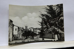 CANINO  -- VITERBO  --  VIALE GARIBALDI - Viterbo