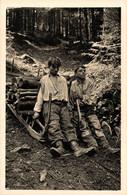 N°84073 -cpa Senones -les Schlitteurs- - Farmers