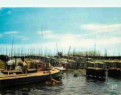 Metiers - Ostréiculture - Culture Des Huitres - Ostréiculteur - Bassin D'Arcachon - Parc à Huitres - Flamme Postale De A - Fishing