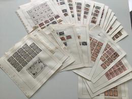 Plaatstudie Uitgifte 1902-1914 - Used