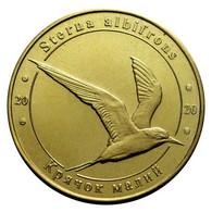 UKRAINE 1 ZLOTNIK FAUNA RED BOOK - TERN STERNE BIRD STERNA ALBIFRONS 2020 - Ukraine