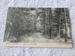 BRAINE LE COMTE  Bois De La Houssière - Kasteelbrakel
