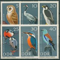 DDR 1967 Tiere Vögel Eule Kranich Falke 1272/77 Postfrisch - Neufs