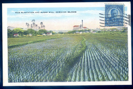 Cpa Des Usa Hawaii - Rice Plantation And Sugar Mill , Hawaiian Islands  AVR21-28 - Otros