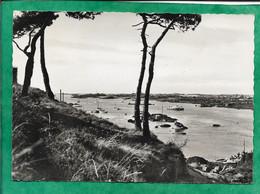 Granville Les îles Chausey Le Sund Et Groupe D'îles 2scans Cachet Des îles M.& Mme Malraye Voie Romaine à Langrune/Mer - Granville