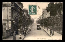 14 - CABOURG - AVENUE DE LA MER - Cabourg