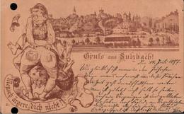 ! Alte Ansichtskarte Gruss Aus Sulzbach, 1897, Vorläufer, Precurseur, Verlag Scheiner Würzburg Nr. 31 - Sulzbach-Rosenberg