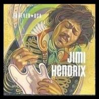 2014USA5066 Jimi Hendrix Musician1,20 € - Unused Stamps