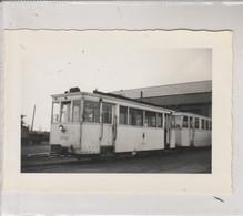 Hasselt , Foto Photo De 1952  TRAM - Hasselt