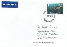 Tristan Da Cunha 2021 Broadnose Sevengill Shark Notorynchus Cepedianus Cover - Tristan Da Cunha
