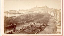 FRANCE -- CANNES -- CDV -- Le Cours -- Photographie E. DEGAND, Nice -- Circa 1880 - Anciennes (Av. 1900)