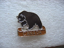 Pin's Ours Du Canada - Animals