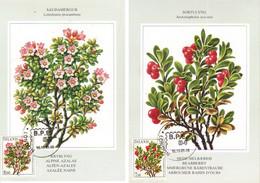 Iceland Island 1984 Flowers, Alpine Azalea , Bearberry - Mi 619-620 On Maximumcard Cancelled - Lettres & Documents