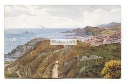 A R Quinton Postcard No. 2706 - View From The Tors, Ilfracombe - Quinton, AR