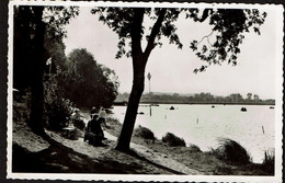 Carte Photo - Lac De Virelles - Repos - Circulée - Edit. G. Hubert-Macq - 2 Scans - Chimay