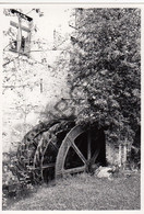 CHASTRE VILLEROUX BLANMONT  - Molen / Moulin - Originele Foto Jaren '70  - Moulins De Blanmont (Q268) - Chastre