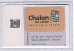 PRIX DE LIQUIDATION - RARE PIAF CHALON Sur SAONE - Voir Scans - PIAF Parking Cards