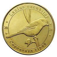UKRAINE 1 ZLOTNIK FAUNA RED BOOK - GREY SHRIKE BIRD LANIUS EXCUBITOR 2020 - Ukraine