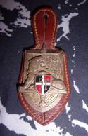 Insigne 51° Régiment D'Infanterie - Armée Française - Militaria - Hueste