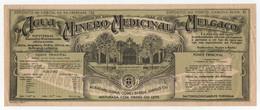 Rótulo Antigo Agua Minero-Medicinal De Melgaço 27 X 11 Cm * Mineral Water Antique Advertising Label - Altri