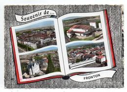 43580-ZE-31-Souvenir De ...FRONTON--------------------fond Livre Ouvert-----------------multivues - Andere Gemeenten