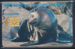 TAAF Télécarte TAAF7A Superbe - TAAF - Territorios Australes Franceses