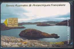 TAAF Télécarte TAAF26 Superbe - TAAF - Territorios Australes Franceses