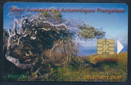 TAAF Télécarte TAAF29 Superbe - TAAF - Territorios Australes Franceses