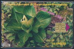 TAAF Télécarte TAAF25 Superbe - TAAF - Territorios Australes Franceses