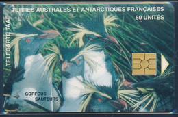TAAF Télécarte TAAF8 Superbe - TAAF - Territorios Australes Franceses